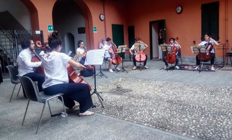 violoncelli1